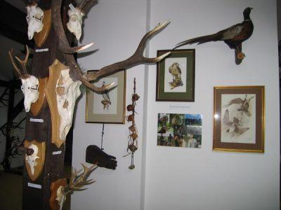 wystawa_mysliwska2
